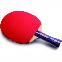 Pálka na stolní tenis DHS 1002