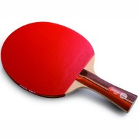 Pálka na stolní tenis DHS 2002