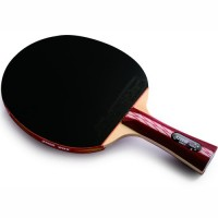 Pálka na stolní tenis DHS  4002