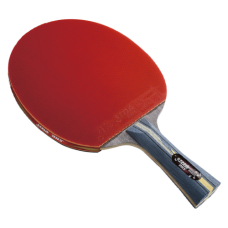 Pálka na stolní tenis DHS  4002C