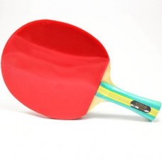 Pálka na stolní tenis DHS S202